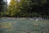 Židovský hřbitov na Srnčím vrchu